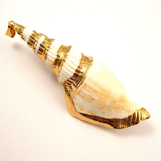 Nature Triton Shell Pendant, Large Necklace Pendant, Gold wrapped - 68mm