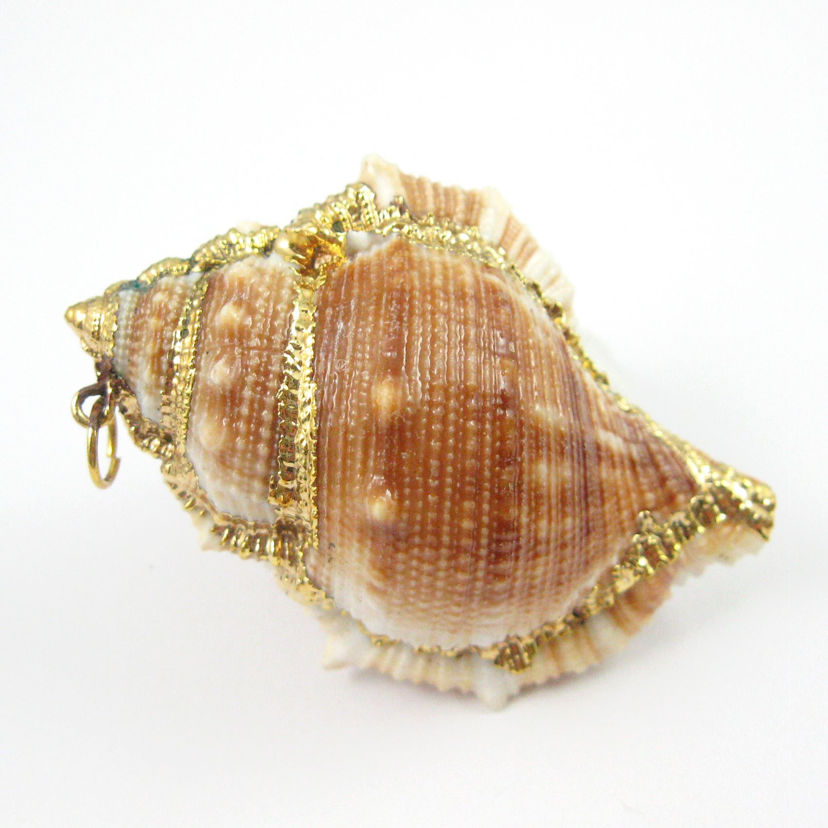 Nature Fighting Conch Shell Pendant, Large Necklace Pendant, Gold wrapped Pendant, Natural Shaded Conch Shell