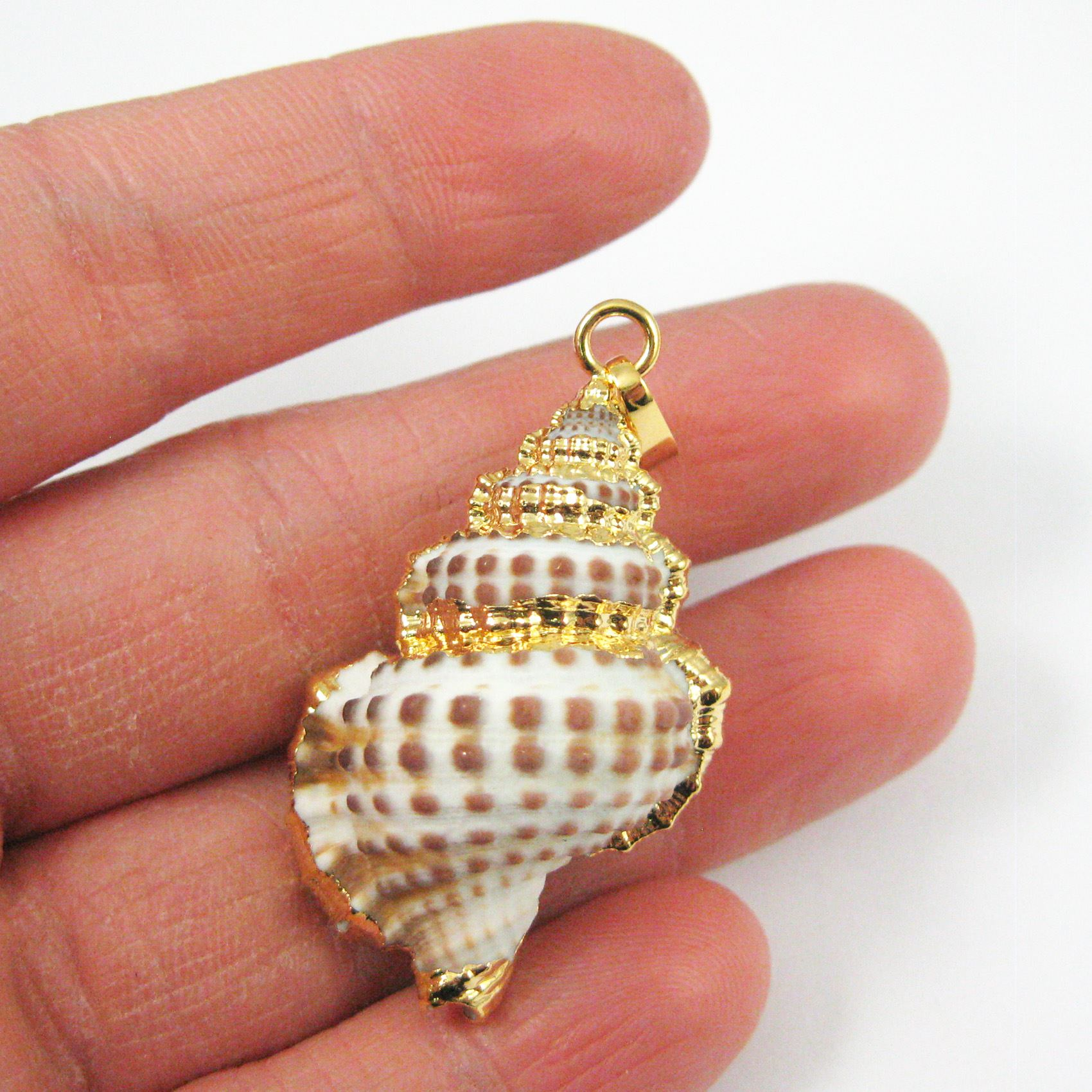 Genuine Shell Pendant, Ribbed Cantharus Gold Wrapped Shell Pendant, Natural Shaded Shell with Gold Wrapping
